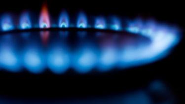 公開!わが家の二酸化炭素排出量|環境